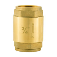 "3/4"" IPS In-Line Check Valve"