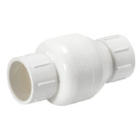 "2"" Slip In-Line Check Valve"
