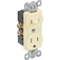 Single Pole Switch And Receptacle - Ivory