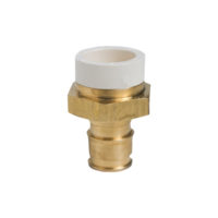 "1/2"" Expansion PEX Male Adapter - Polymer (PEX x CPVC)"