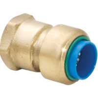 Eastman Brass Push-to-Connect Female Adapter - 1 in. x 1 in. FIP