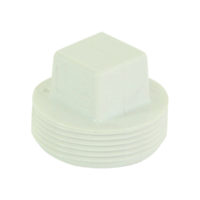 "2"" Cleanout Plugs - PVC DWV"